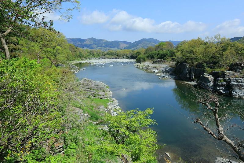 新緑の荒川の風景