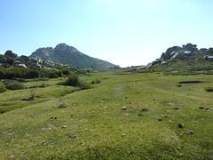 Arrivée sur la partie Nord du Pianu d'Urnucciu