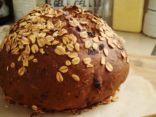 Raisin Coconut Chocolate Oat Boule