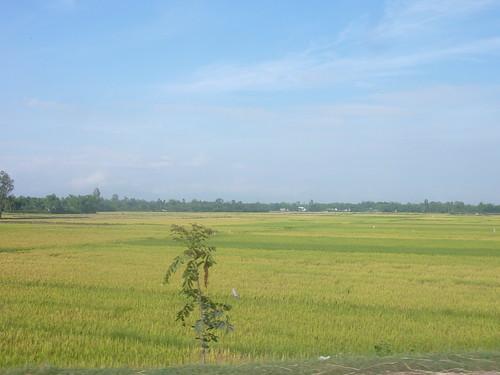 V-Route Quy Nhon-Da Nang (8)