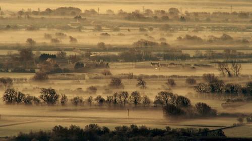 morning trees mist misty rural sunrise somerset fields f18 brentknoll colourmonochrome somersetlevelsandmoors