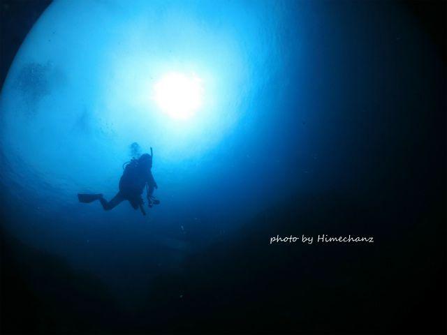 淡い光に包まれながらダイビング♪