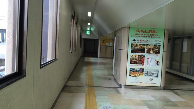 IMG_7604