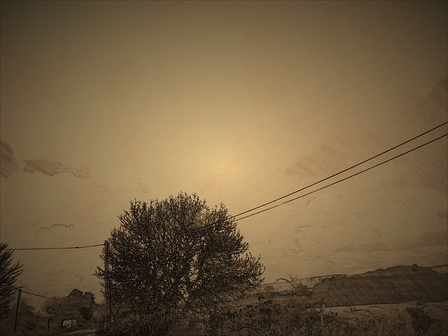 The #golden #sky … #landscape #nature #scenery #view #land #tree #photography #filter #edit #effect #brown