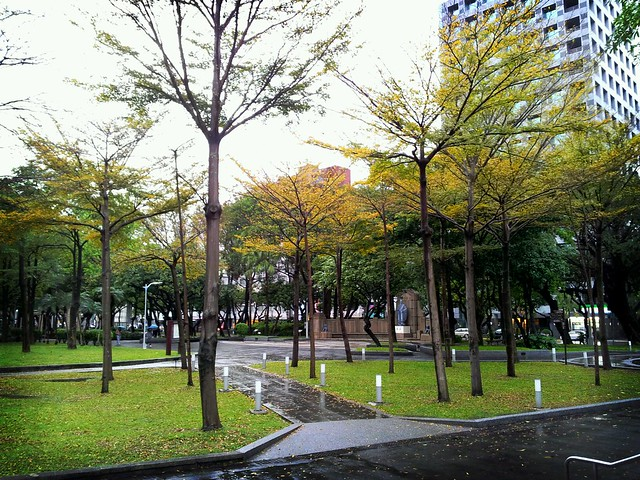 雨中的公園