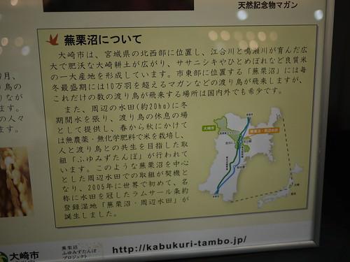 ふゆみずたんぼ20120226_03
