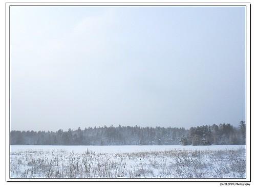 2012-02-25-1-DSCN0576