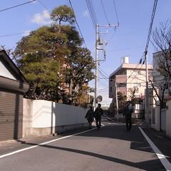 中川への道