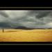 Un paseo por las dunas by agural