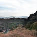 Arashiyama 嵐山 - 43