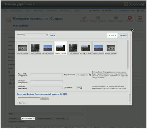 Вставка изображения при помощи интерфейса менеджера мультимедиа
