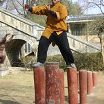 SHAOLIN INDIA WWW.SHAOLININDIA.COM Shaolin Kung Fu India