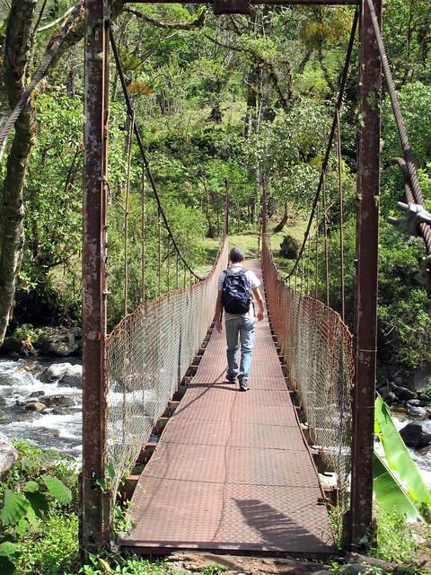 Ponte suspensa sobre o riacho