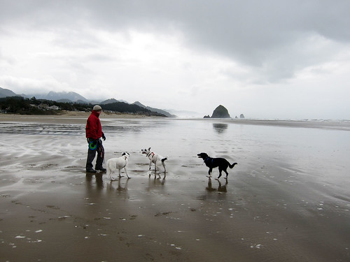 Oregon Coast_March 16, 2012_74