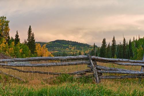 Another cloudy view of fall scenery in Colorado...