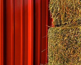 42/365 (+1) Red Wall with Hay Bales