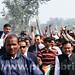 Rahul Gandhi's road show in Sultanpur, U.P (8)