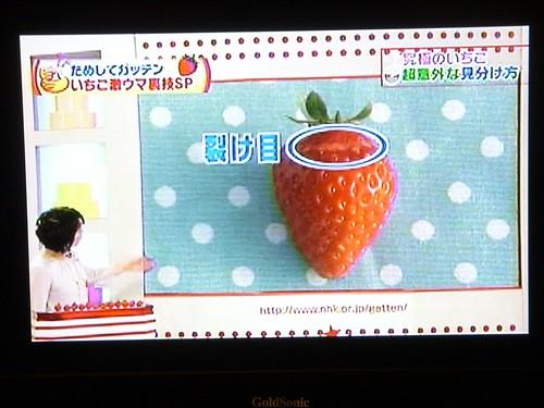 草莓01.JPG