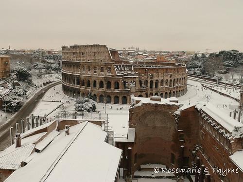P1120661 - Colosseo_pomeriggio_4.02.2012