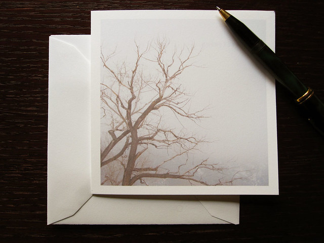 Nature tree card, a foggy tree minimalist blank card, of a cottonwood tree's bare branches twisting in a foggy landscape.