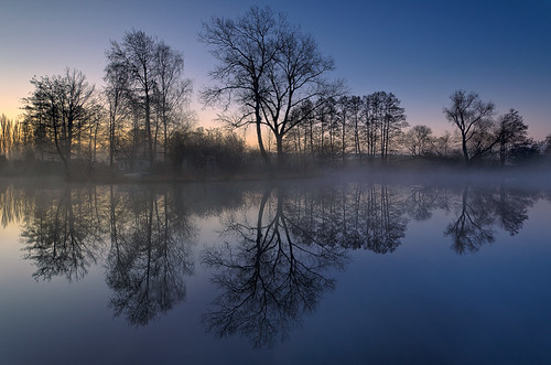 morning light mist lake nature fog sunrise landscape see march spring mood brandenburg dietrichbojko schmalersee