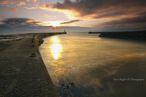 Seaham Sunshine by Dave Brightwell
