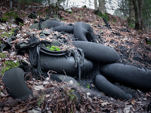 leaves wisconsin landscapes moss rubber tires erosion pollution subjects eauclaire innertubes lowescreek