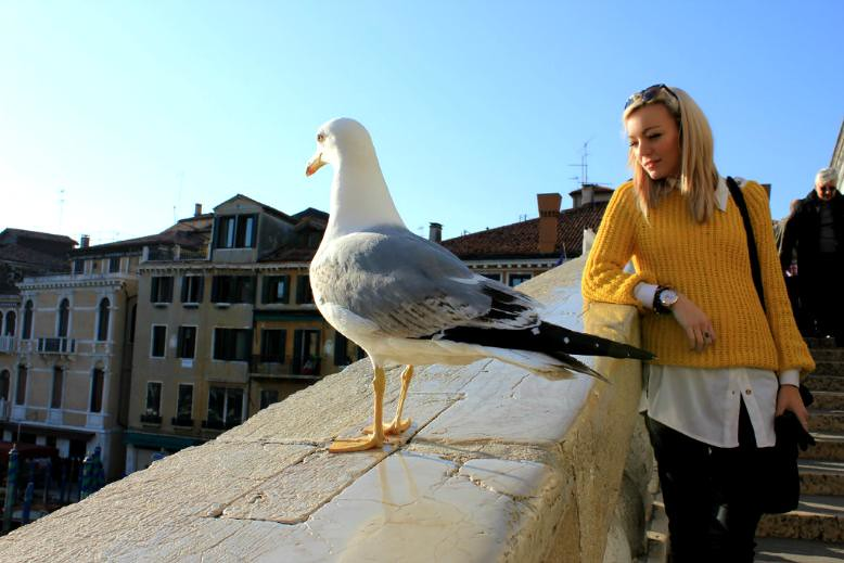 venice day 2 seagul and me