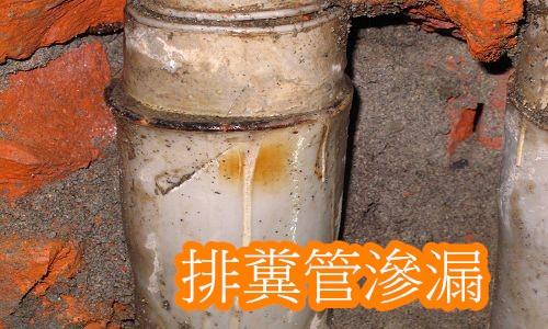 5排糞管漏水