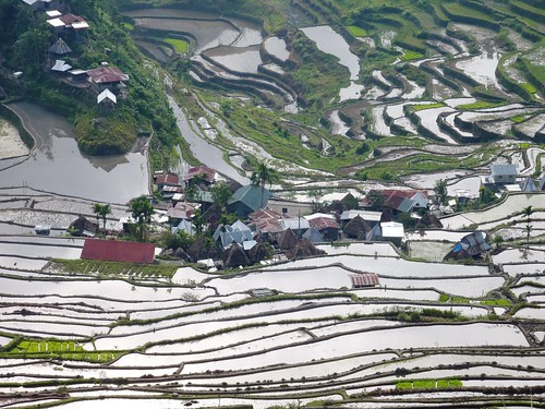 Luzon-Batad (87)