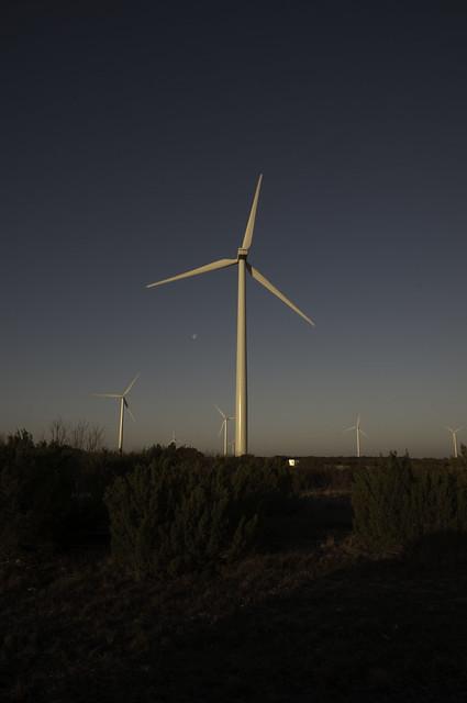 Sunrise in the wind farm