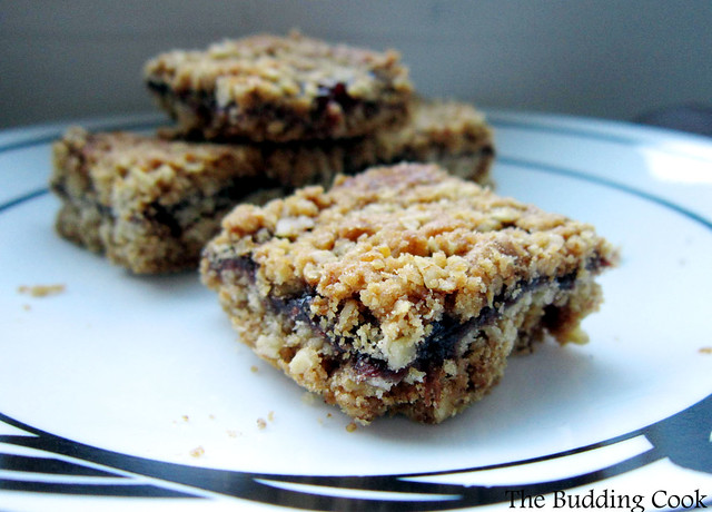 Strawberry oatmeal squares1