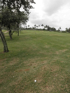 Hawaii Prince Golf Club 278