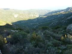 Trace de la crête d'Alzu di Lanu : vers la vallée du GR20 et Conca
