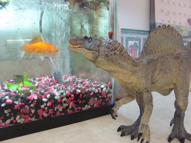 Spinosuarus likes fish