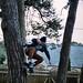 Sam Dearden- Tree Wallie by Sirus f