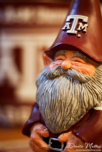 163: Aggie gnome