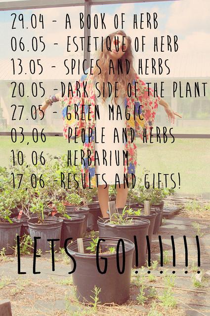 Herb Magic: двухмесячный курс о растениях
