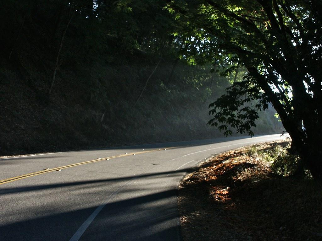2008-07-19_19-00-38-PICT0024