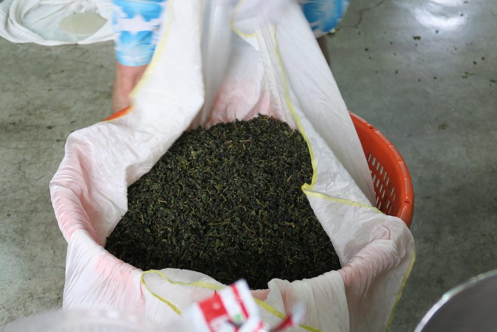 十三製茶 (22)
