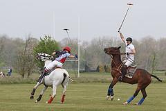 Cranwell Polo Tournament 2016