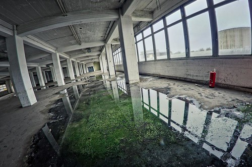 Urbex: Green Puddle by jonasginter