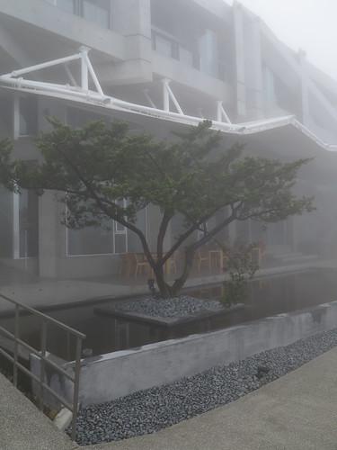 楓川秀雅建築室內研究室 - 華山觀止蟲二行館