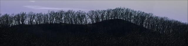 Rolling Horizon