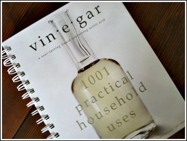 Cleaning With Vinegar    Without the Smell! - Andrea Dekker