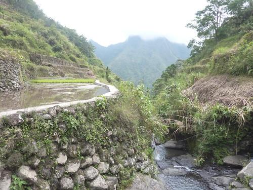 Luzon-Bangaan (10)