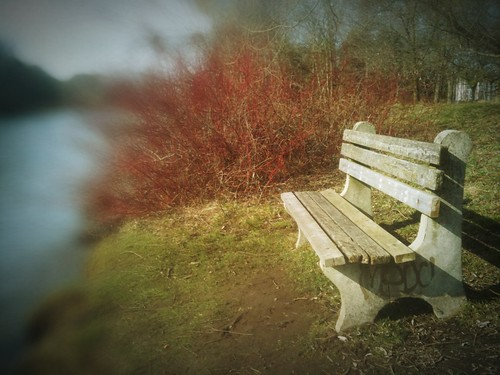bench by the river by kim/ber