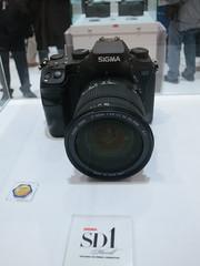 Canon PowerShot S100 Photos