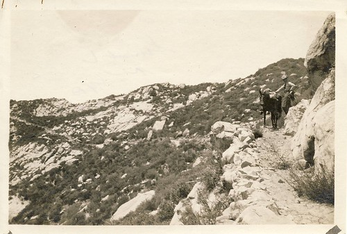 Ocean View Trail, 1923 (Westward)