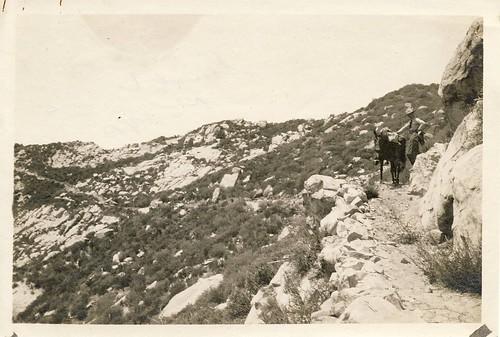 Ocean View Trail, 1923 (Westward)